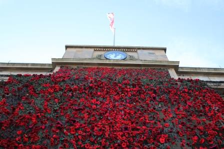Poppies on town hall