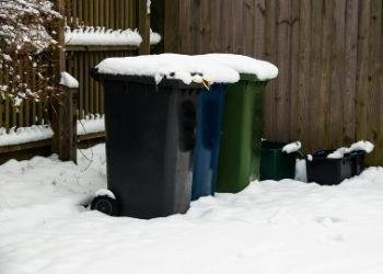 An image of wheelie bins in the snow